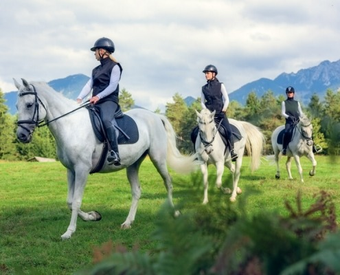 Friends Horseback Riding in the Countryside