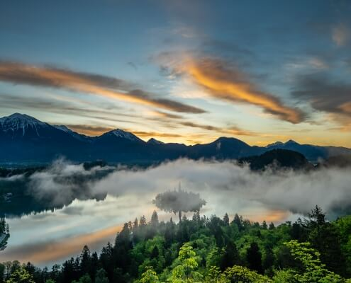 Misty Lake Bled